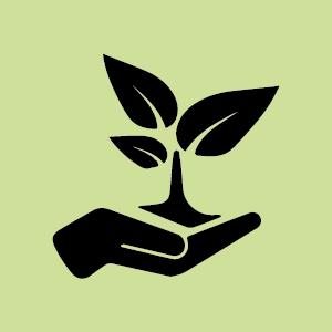 Medi Ambient